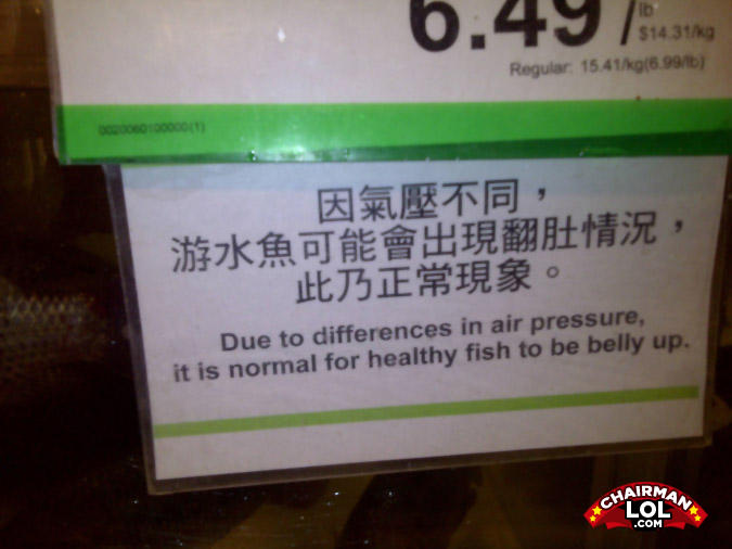 - That's some… fishy scenario. So, they'll cook it f